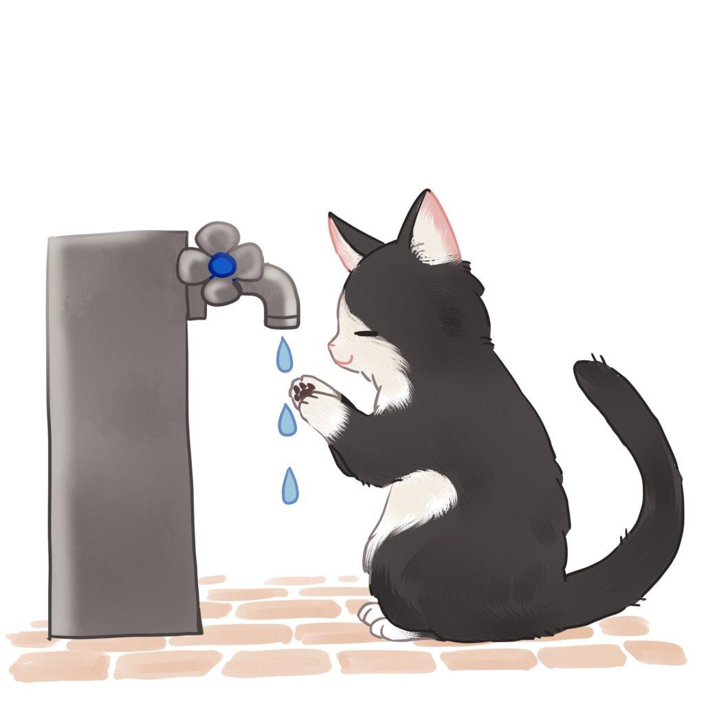 ひだまり号|手洗い猫イラスト